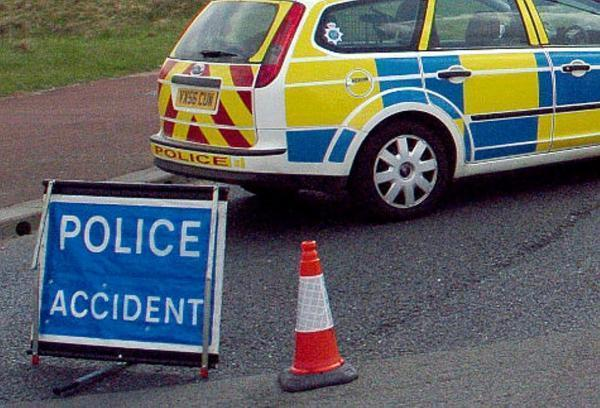 Two men have died after car crashes into tree