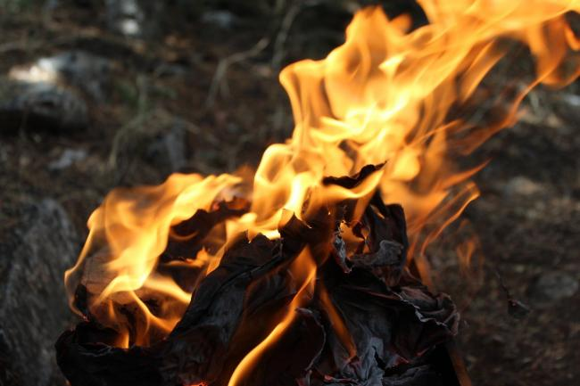 Warning - Essex's fire service has warned there is a high risk of wildfires this week