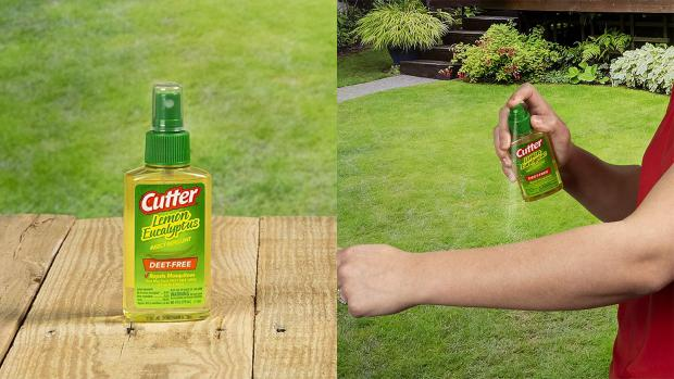 Southend Standard: Ditch the horrible smelling insect repellents for one that's fragrant and offers up to six hours of protection. Credit: Cutter