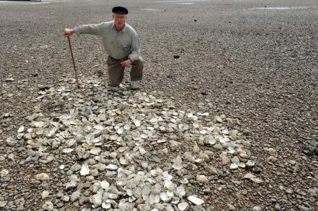 Councillor Peter Wexham on Chalkwell foreshore