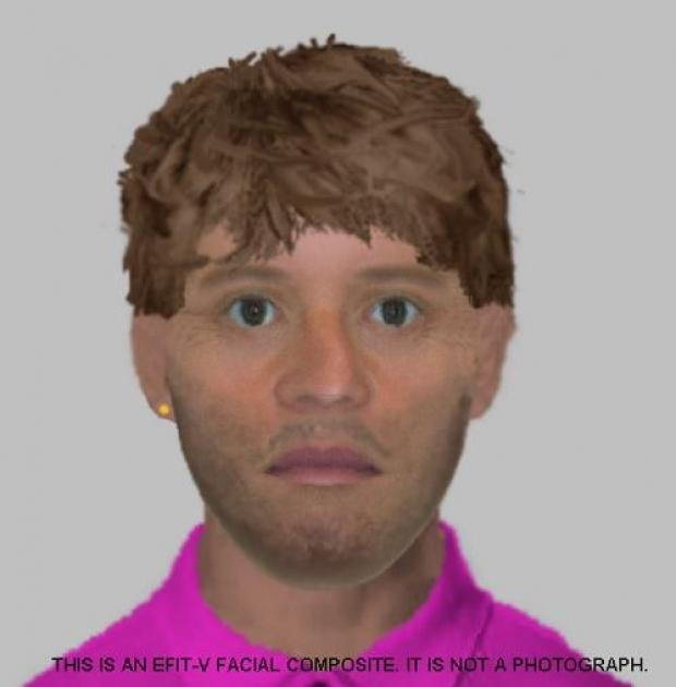 Police release E-Fit of sex attacker
