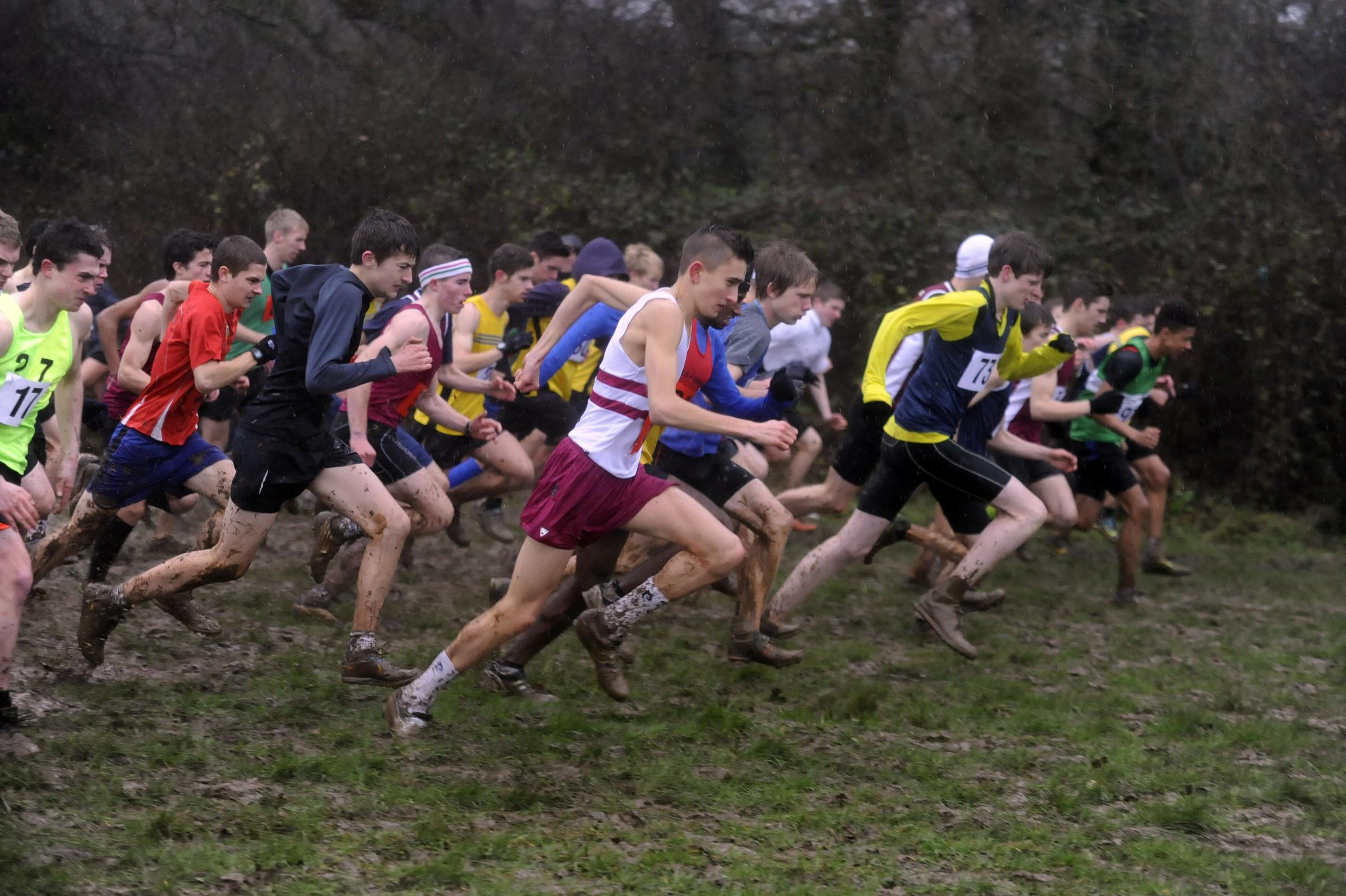 Starting line: Runners at the Essex Schools Cross-Country Championships
