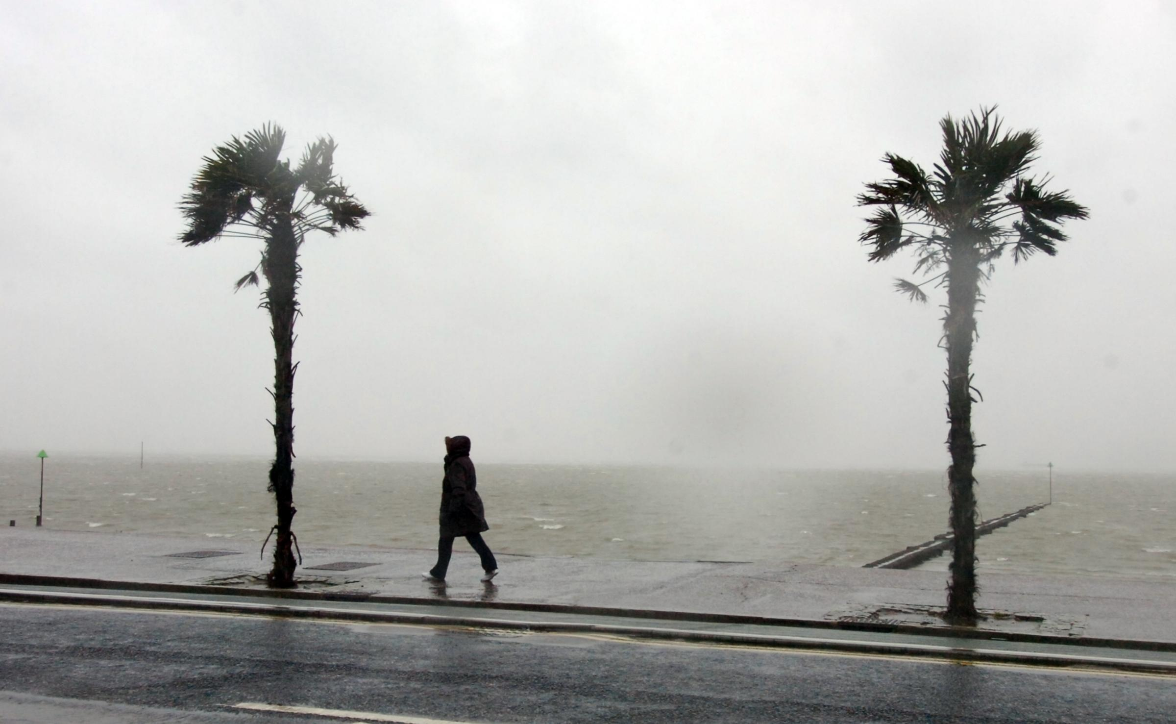 Heavy rain and high winds batter South Essex again