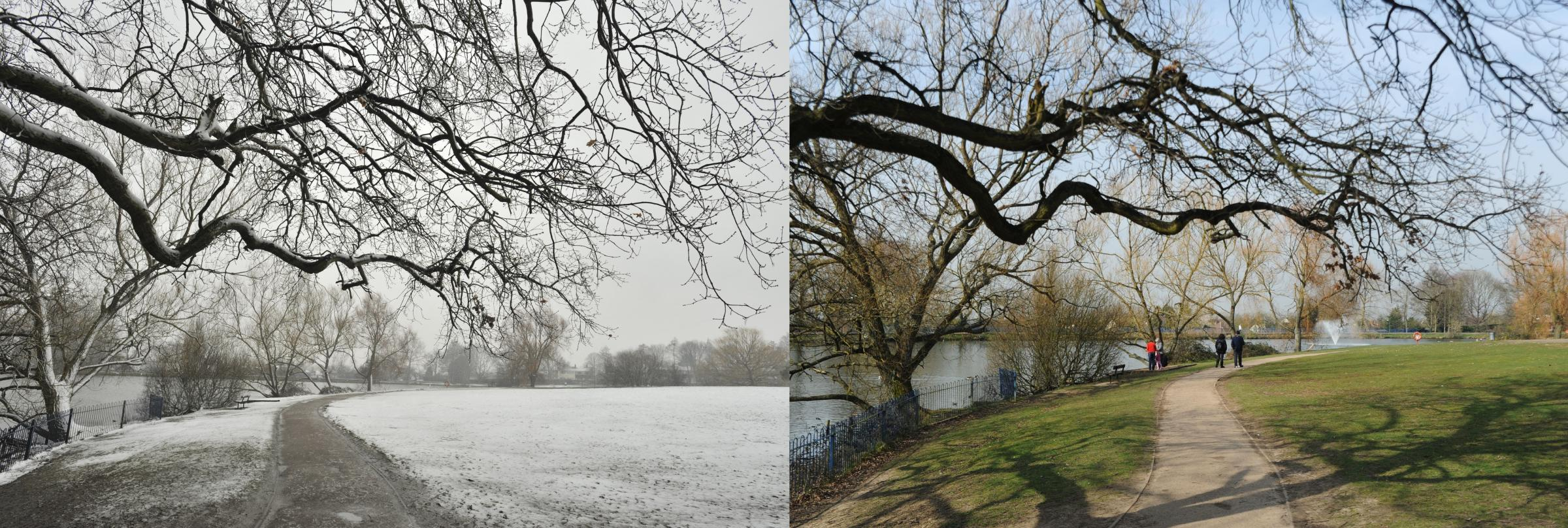 Lake Meadows Billericay in March last year and this year