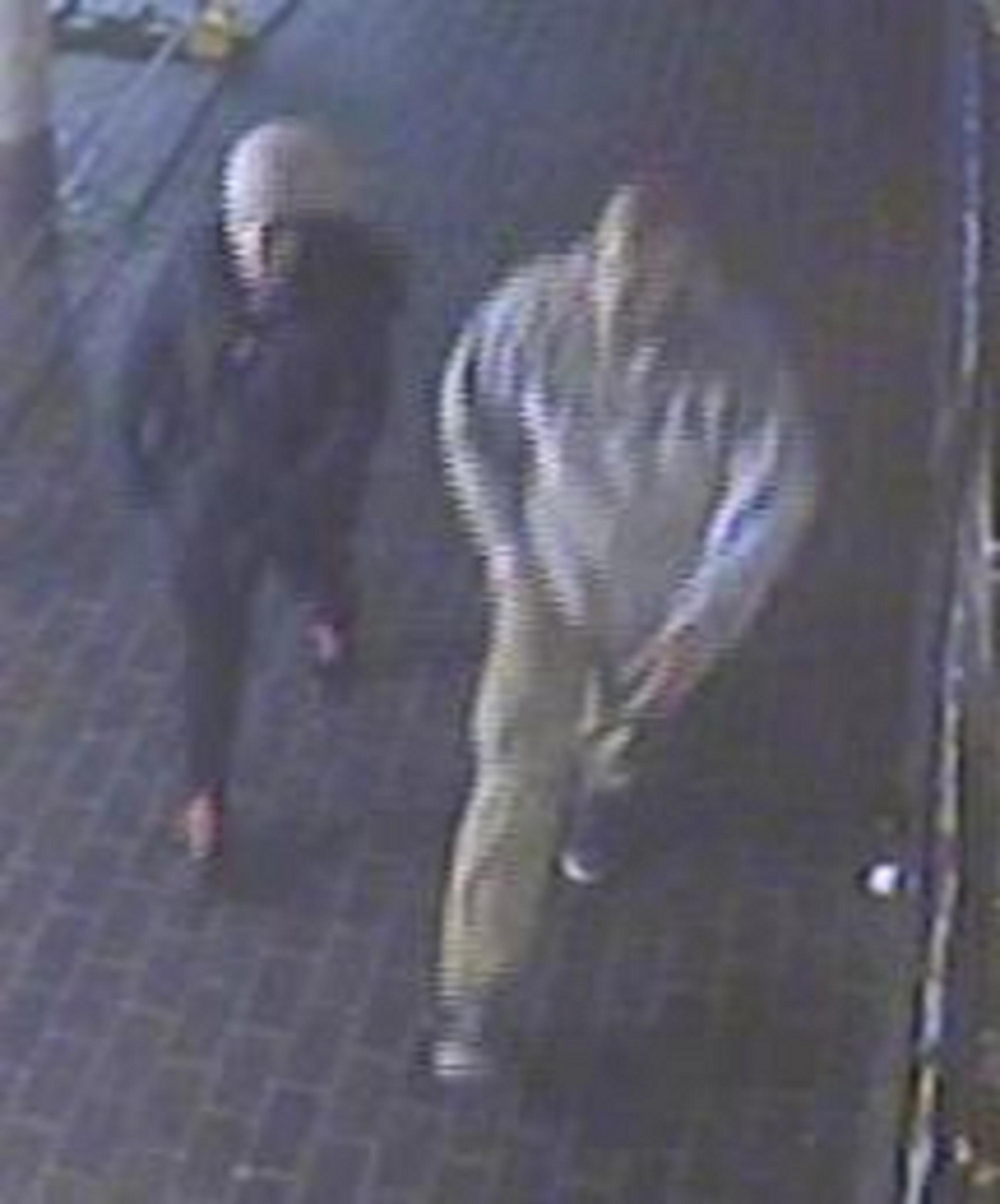 Can you help police catch two men who robbed woman in Pitsea?
