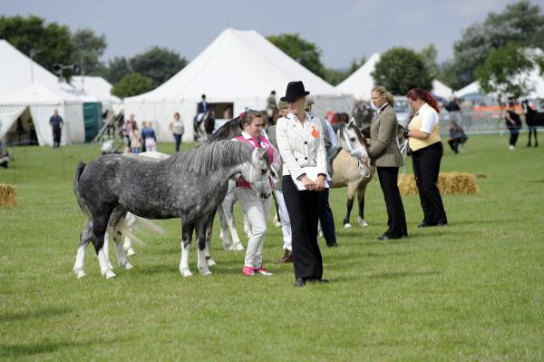 Thousands set for a bumper Orsett Show