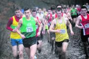 The early stages of the under-20 men's race at the Essex Cross-Country Championships