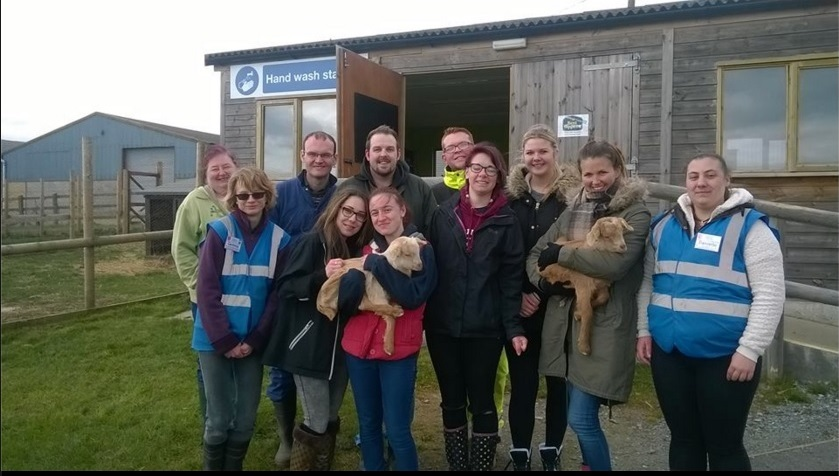 Volunteers at the Hadleigh Farm Rare Breed Centre