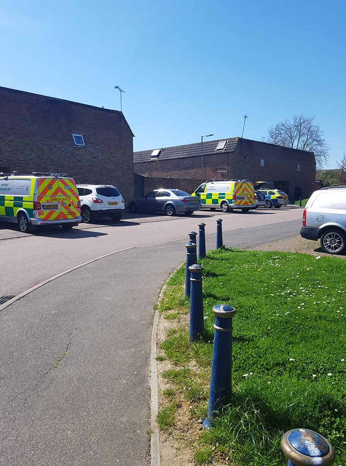 Large police presence including armed response attend incident